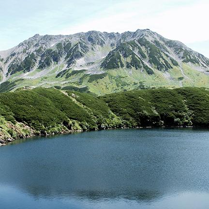 富山の美しい水